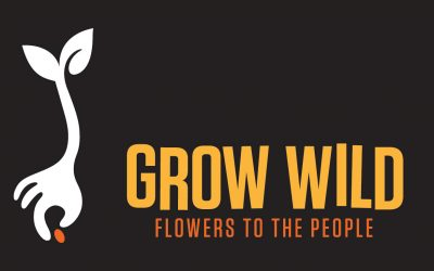 Grow Wild Funding Opportunities
