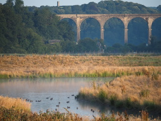 Latest News on the Walkway across the Tamar at Calstock